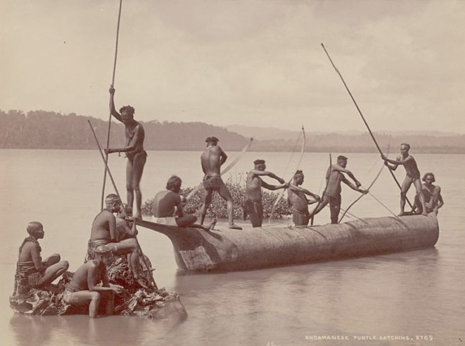 Group of Andaman men and women catching turtles. Smithsonian Institution, National Anthropological Archives; 1903 or earlier. Courtesy of Wikimedia Commons