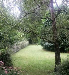 Vue du jardin derrière l'école L'Etincelle Montessori