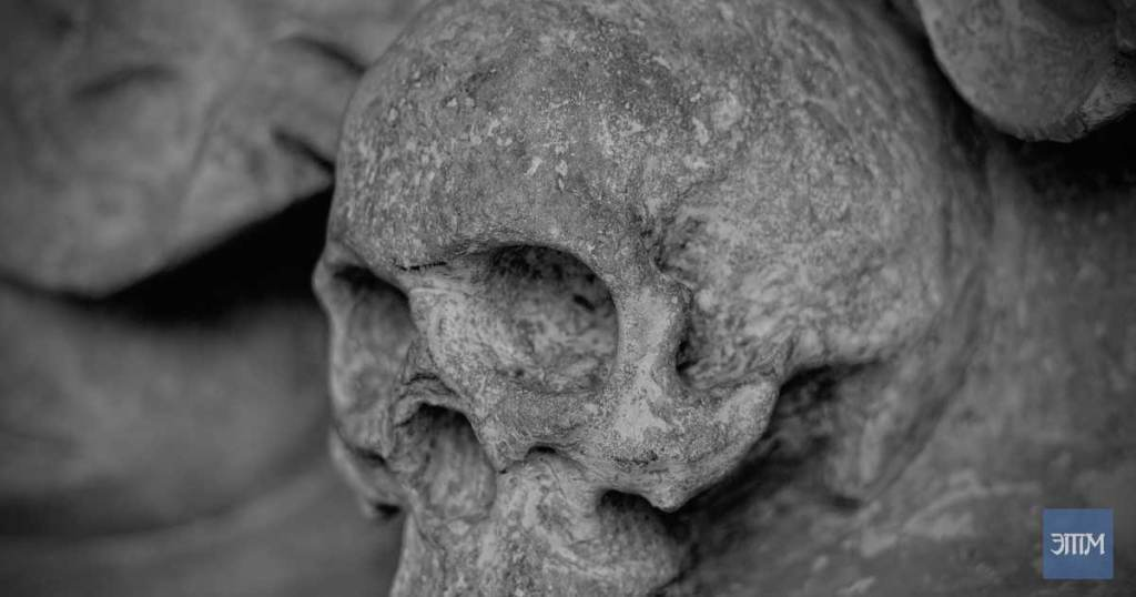 древние скелеты