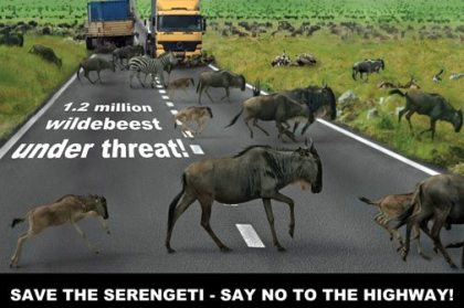Tanzania government denies highway plans through Serengeti