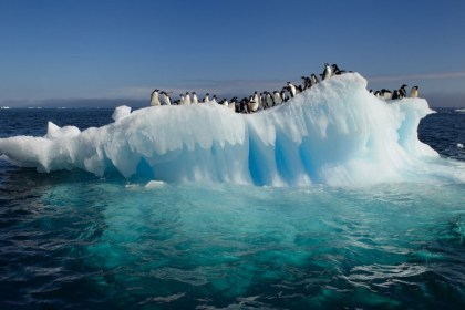 Canada-US Arctic strikes a major win for unique ecosystems