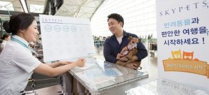 SKYPETS: Pets fly high with Korean Air's new rewards program for pets