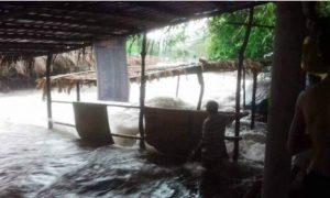 Flash flood forces hundreds of tourists to flee Vietnamese resort