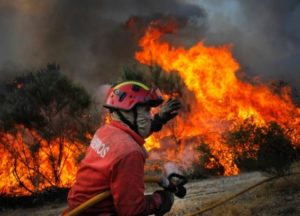 State of emergency: Raging wildfires kill at least 20 people in Portugal