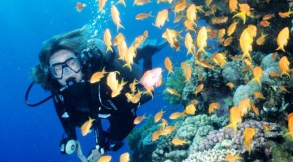 Brazil may establish large marine protected areas for diving ecotourism