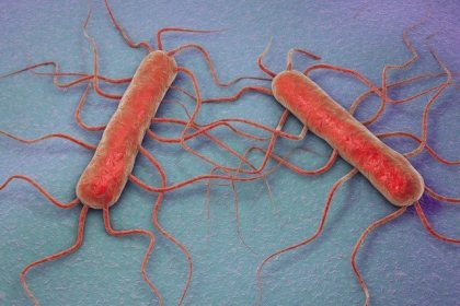 Listeria: Deadly health crisis in South Africa tourists may not be aware of
