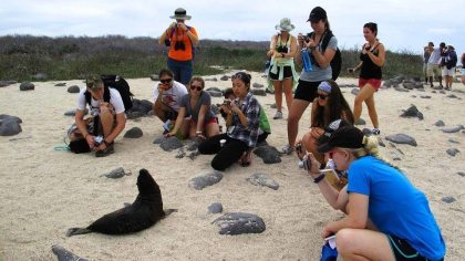 Galapagos tour operators: No more tourism growth!