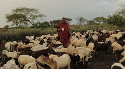 Arusha to host world's environmental heroes
