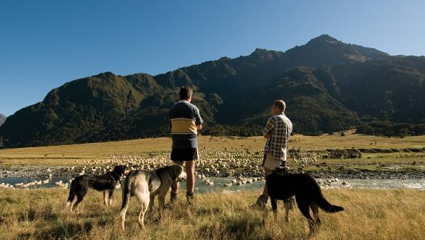 Mt Aspiring Station owner Randall Aspinall thinks DOC should consider charging for national parks and day walks to fund ...
