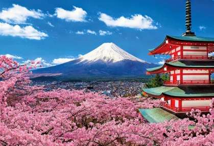 Tourism Japan: The 2020 Olympics are starting now