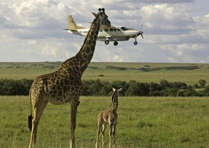 Tanzania tour operators want reforms to improve business landscape