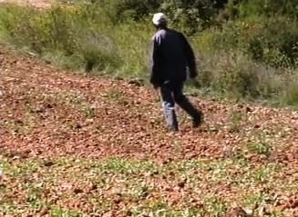 home-caminant
