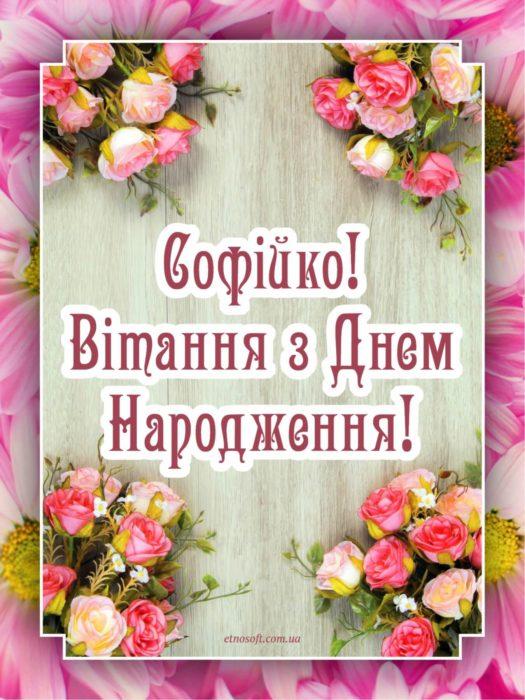 Іменні листівки з Днем Народження Софія: анімаційні ...