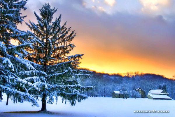 Зимова поїздка в Закарпаття з Києва