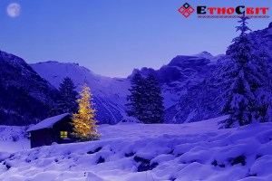 Зимовий тур в Карпати