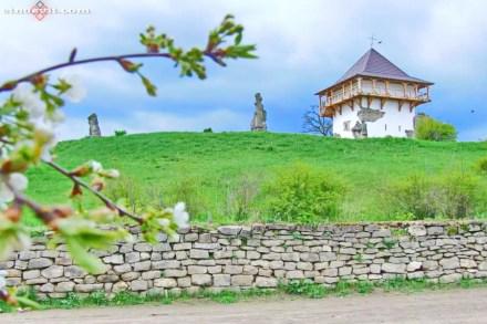Історико-культурний заповідник «Буша», Вінниччина