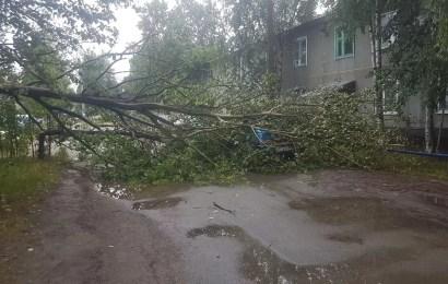 И снова над городом пронесся ураган…