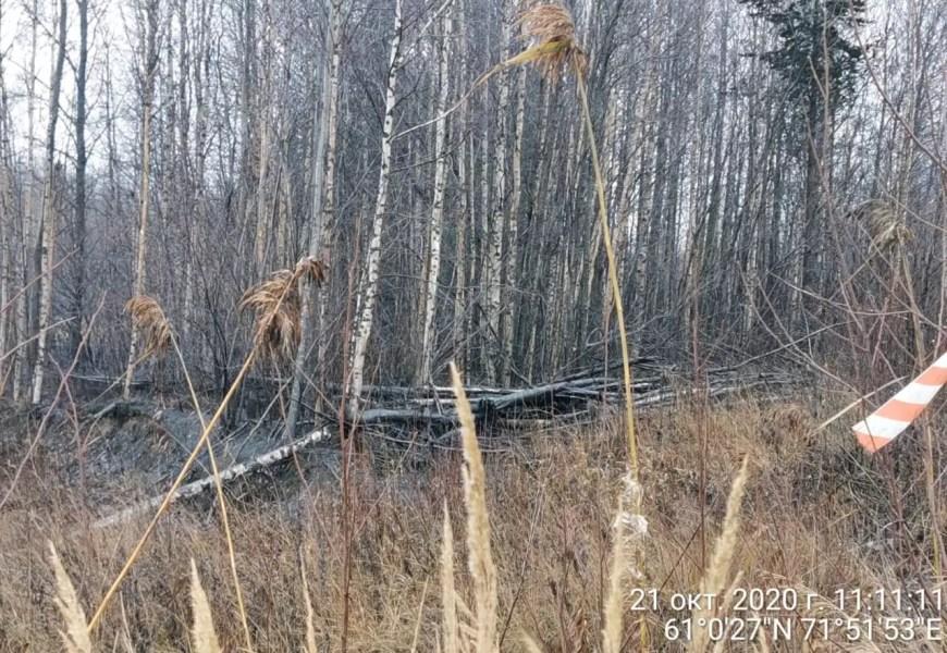 Природнадзор Югры оценил ущерб от аварии на Правдинском месторождении
