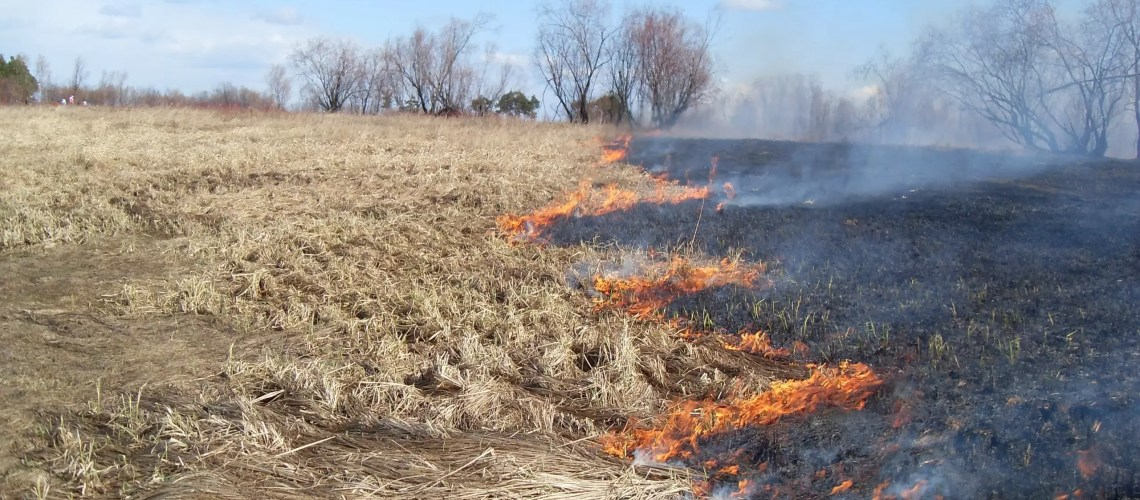 В Югре начался пожароопасный период