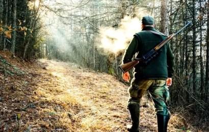 Жители Югры онлайн могут оформить разрешение на охоту