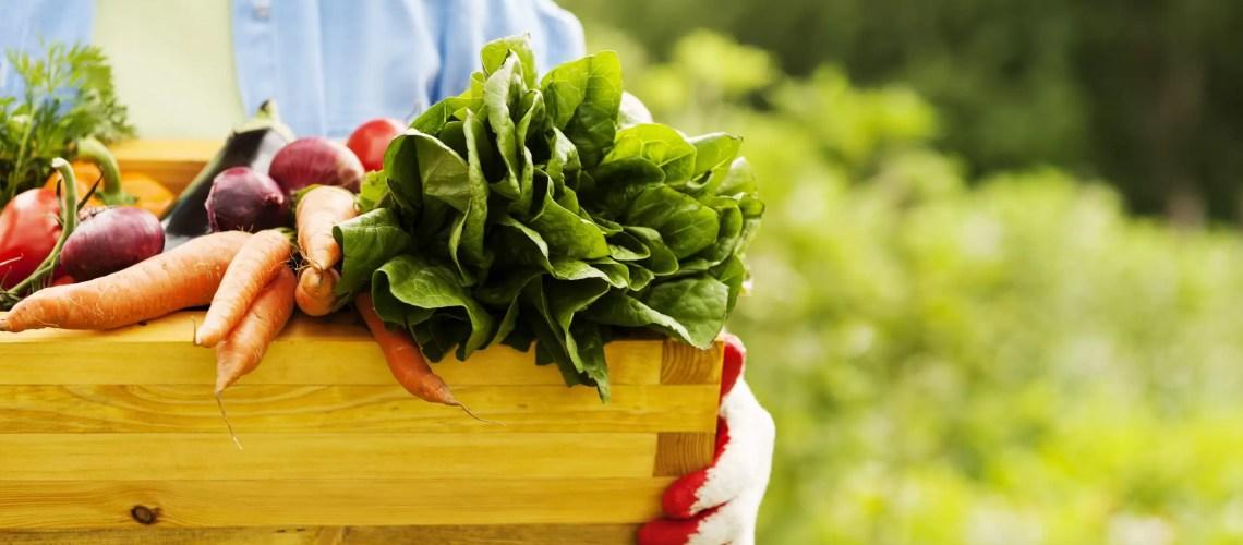 В Югре будут развивать органическое сельское хозяйство
