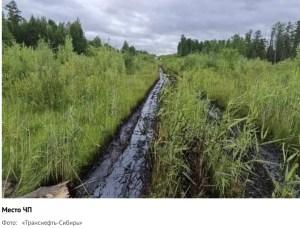«Транснефть» поймала «Роснефть» на сокрытии экологической аварии