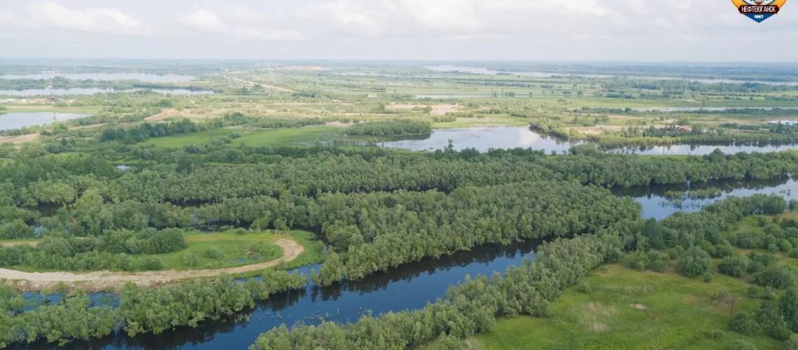 В Югре вместе с грибным сезоном выросло число потерявшихся в лесу