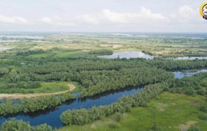 В Югре идут поиски трех человек, пропавших в лесу