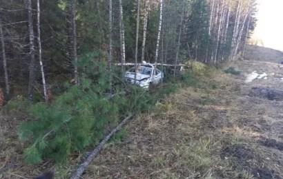 Потянуло в лес: в Югре водитель не справился с управлением и въехал в дерево