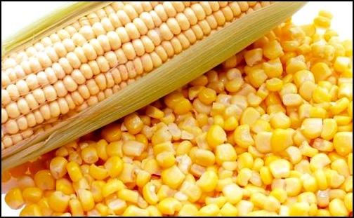 Кукурузная мука от давления: рецепт, полезные свойства. Кукурузная мука при гипертонии