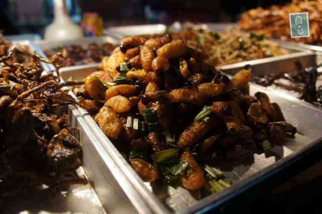 Fried and salty bugs