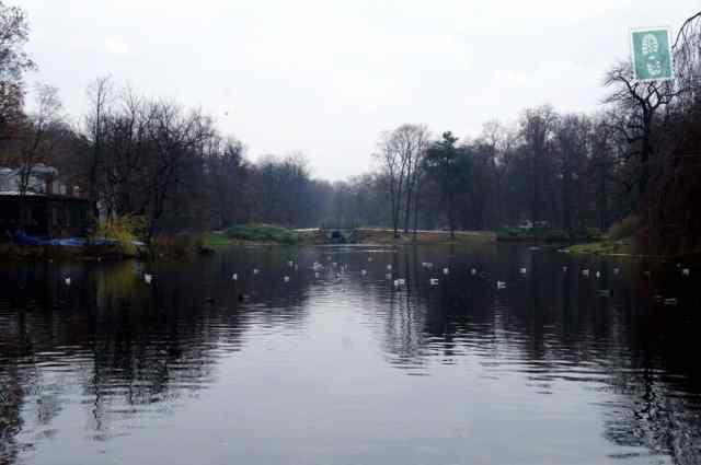 The park in Lazienki