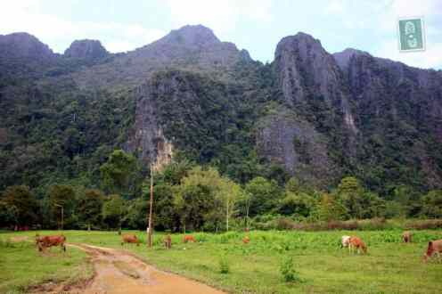 Mountain scenery near Vang Vieng