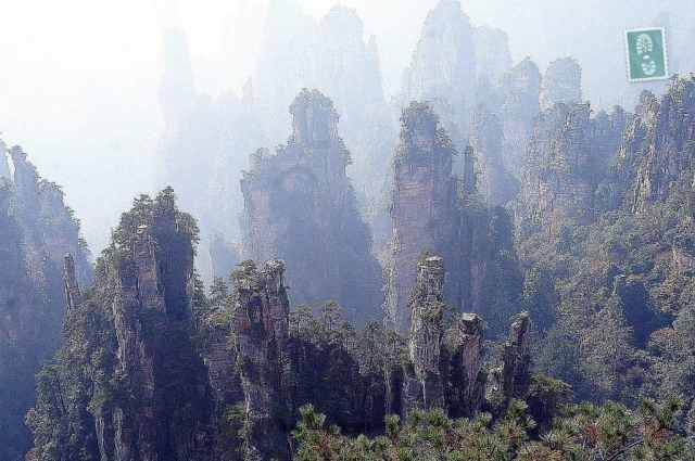 The Floating Hallelujah Mountains in Zhangjiajie.