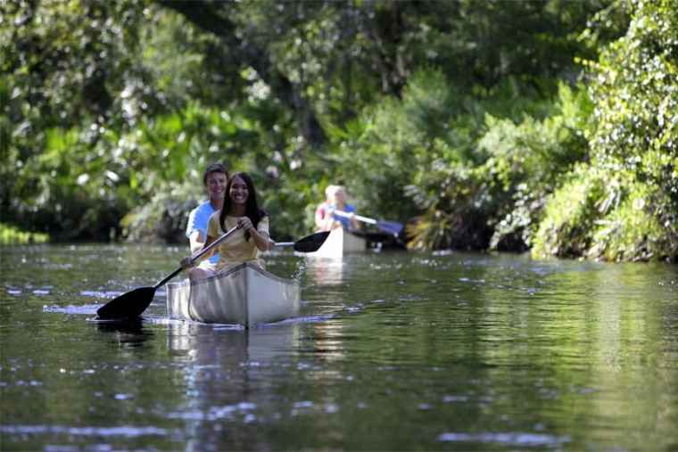 ake a kayak or canoe ride along Shingle Creek, headwaters to the Florida Everglades