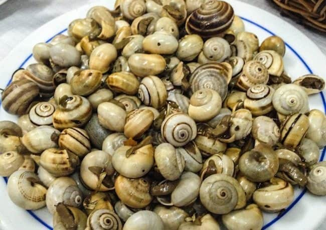 Snails, believe it or not, one of Lisbon's favorite snacks during summer time. They're cheap and eating them can be quite an experience