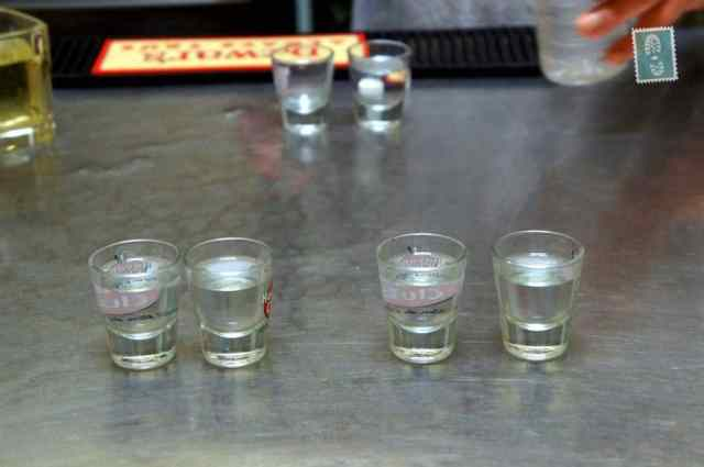Drinking vodka shots in hostel