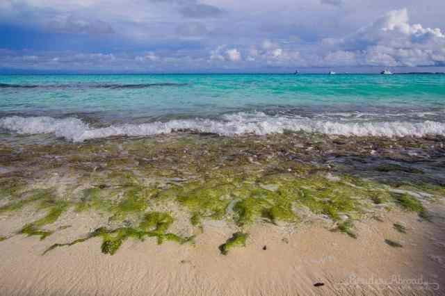 waves-crashing-on-shore