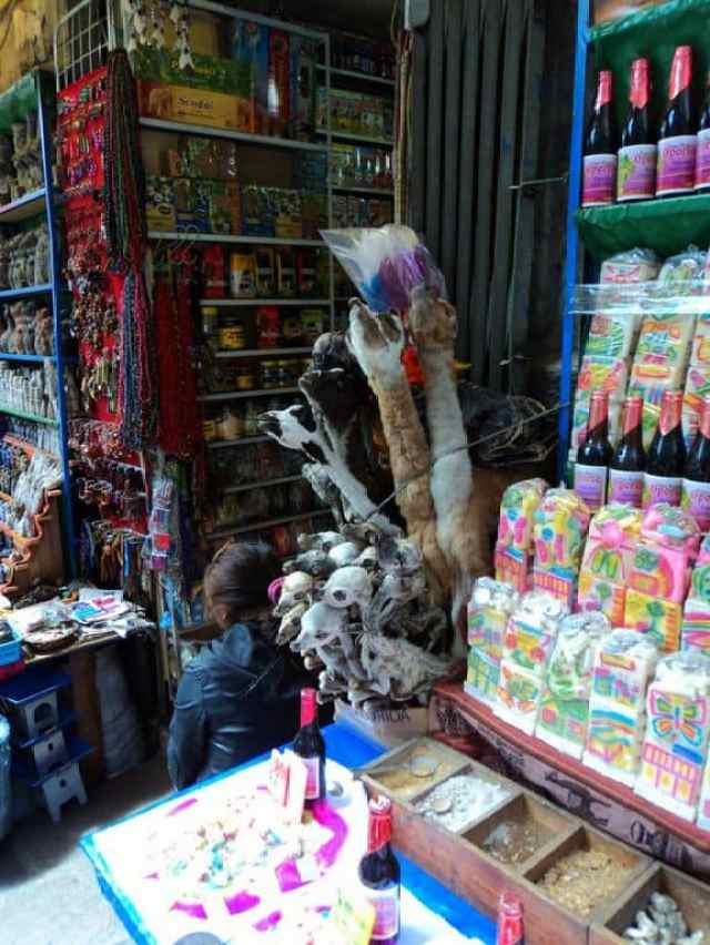 Lama fetuses in the witches market