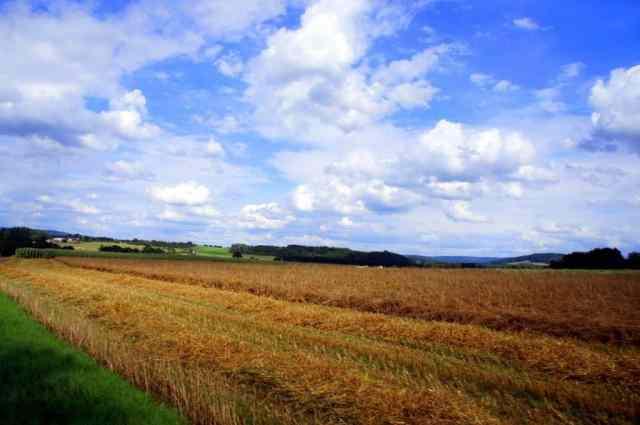 Beautiful Ardennes