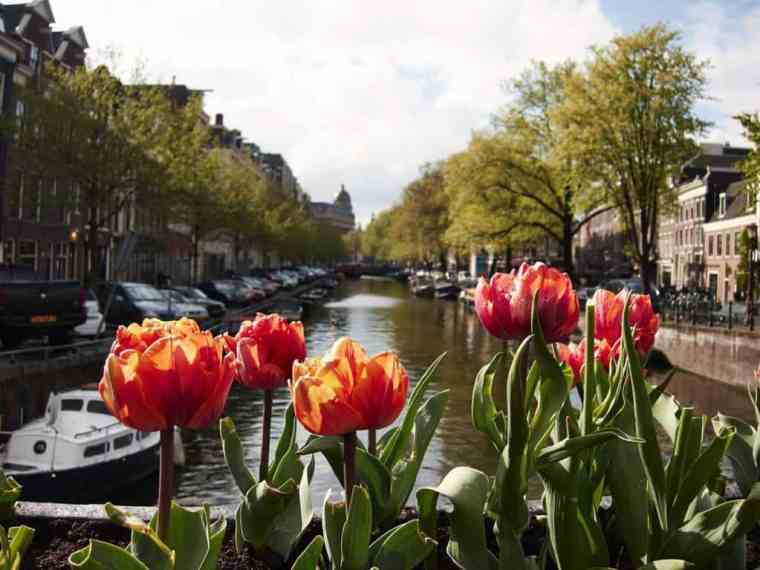 Amsterdam_038_derinthorpe
