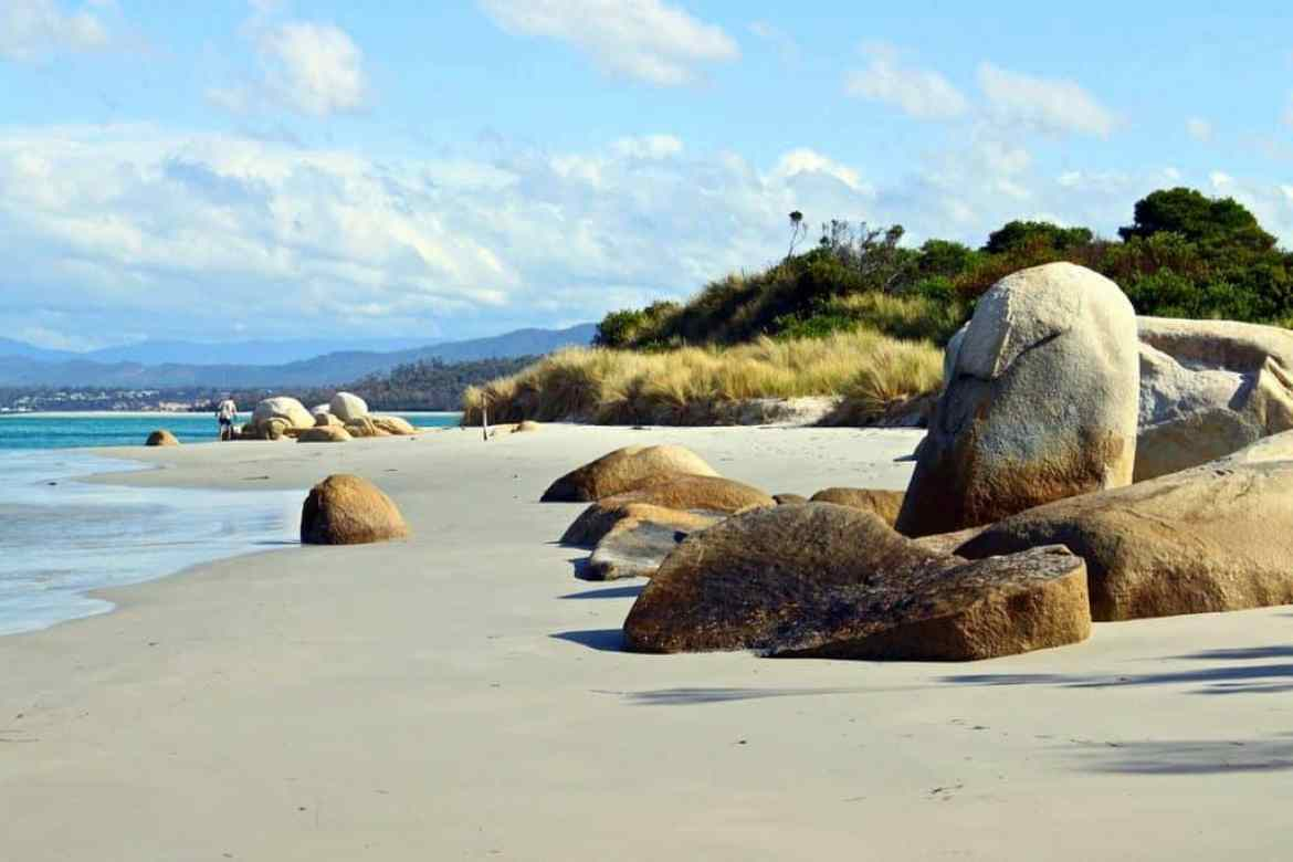 a beach in tasmania