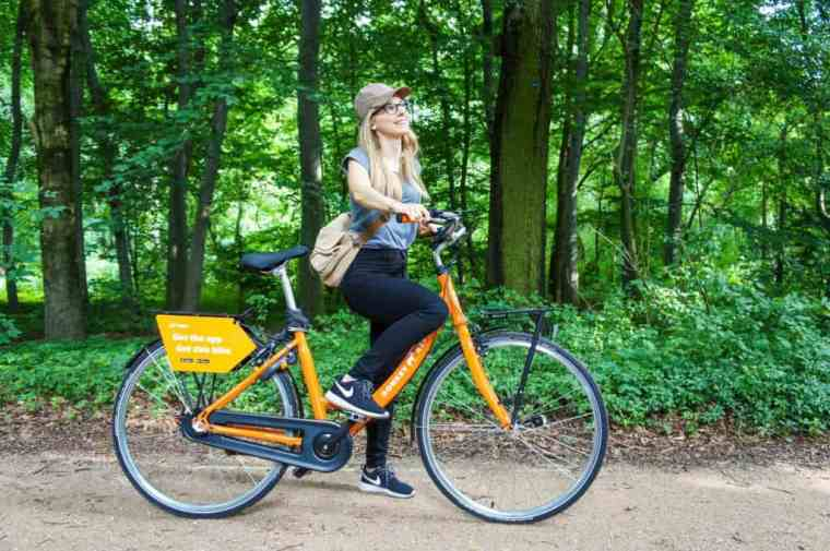 Sightseeing Berlin by bike