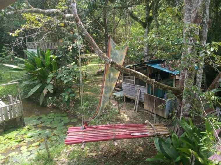 A tranquil garden retreat