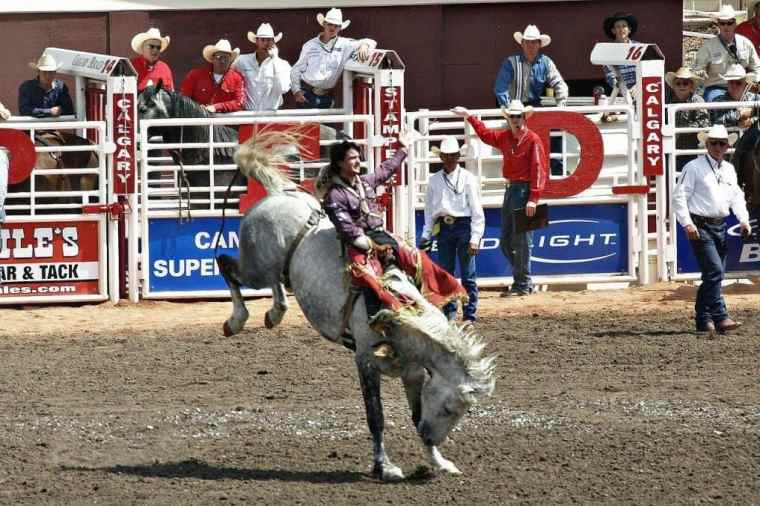 A rodeo horse rider in Calgary