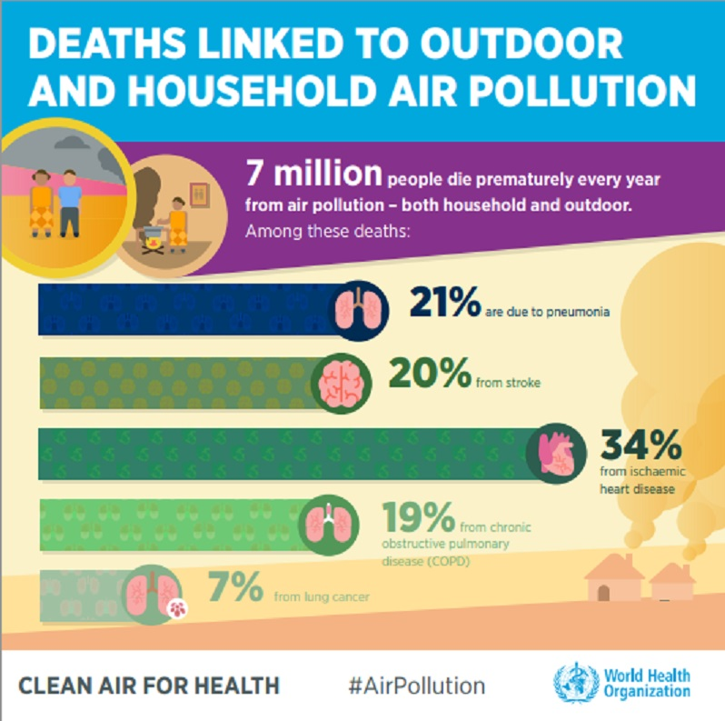 infographic air pollution