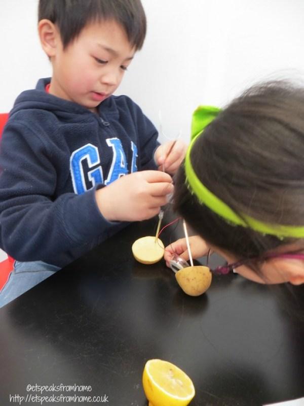 STEM science potatoes