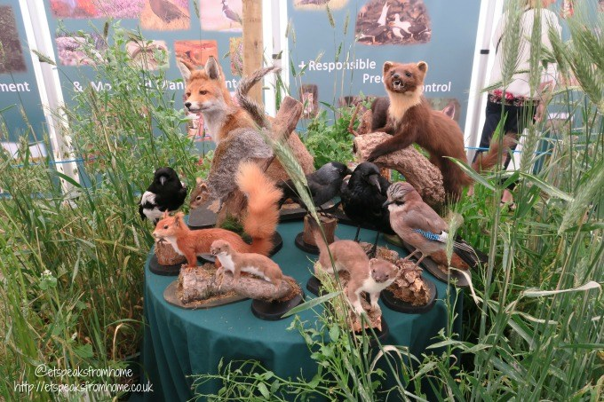 countryfile live display