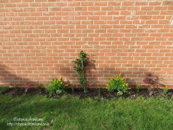 Add colour to my Garden – After Transformation garden