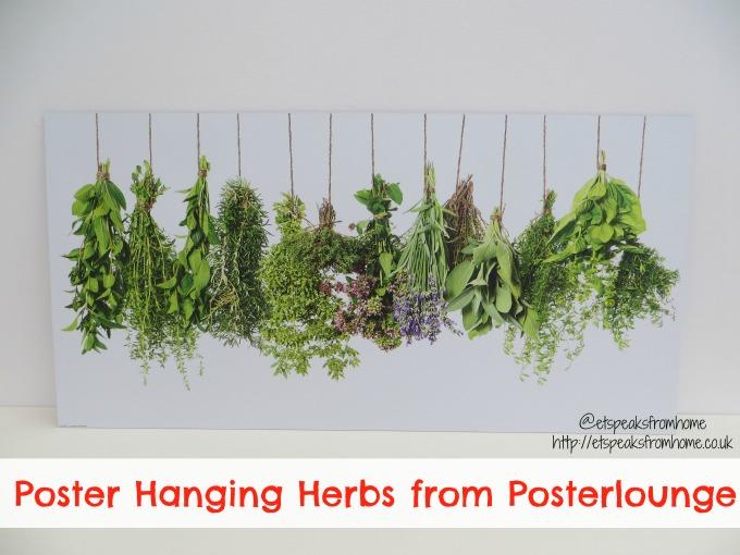 posterlounge hanging herbs poster